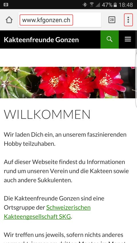 Webseite www.kfgonzen.ch in Browser öffnen